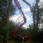 Spiderhire - Spider Lift Hire, Suffolk, East Anglia, UK