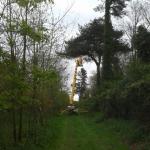 Spiderhire - Spider Lift Hire, Suffolk, Sudbury, East Anglia, UK